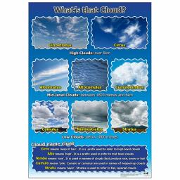 What's that Cloud? Poster
