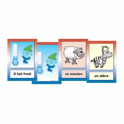 French Weather & Animals Flashcards