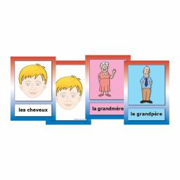 French Parts Of The Body & Family Flashcards