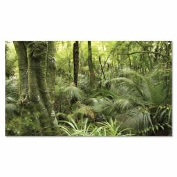 Tropical Rainforest Backdrop