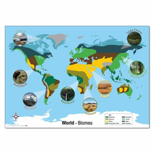 World Biomes Map