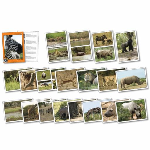 African Safari Photopack