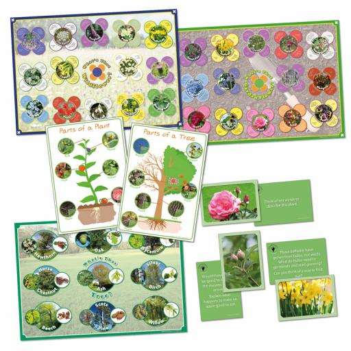 Discovering Science - Plants Bundle