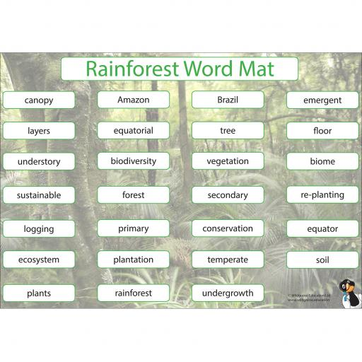 Rainforest_Word_Mat