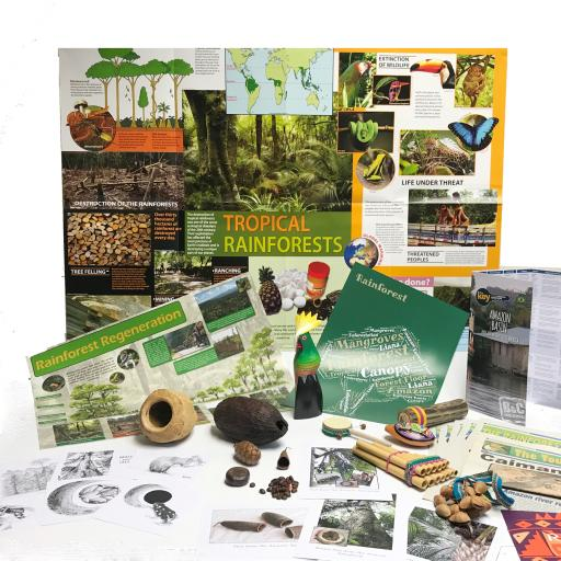 Rainforest Artefacts Collection