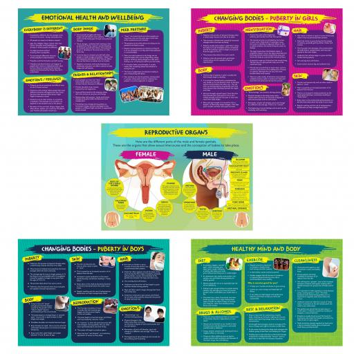 Physical and Emotional Wellbeing Poster Set