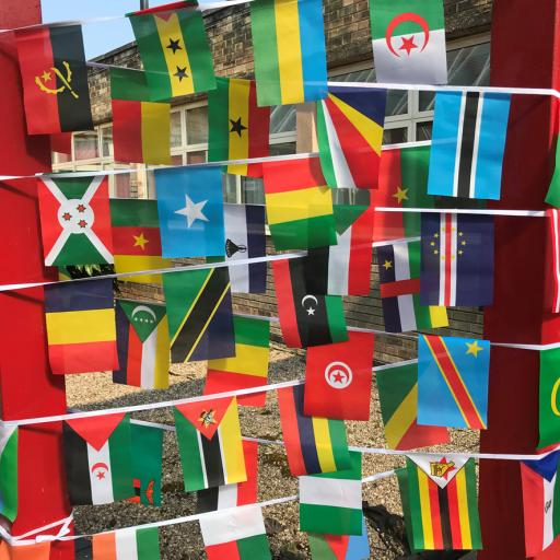 African Nations Bunting